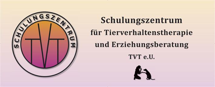 banner-tvt